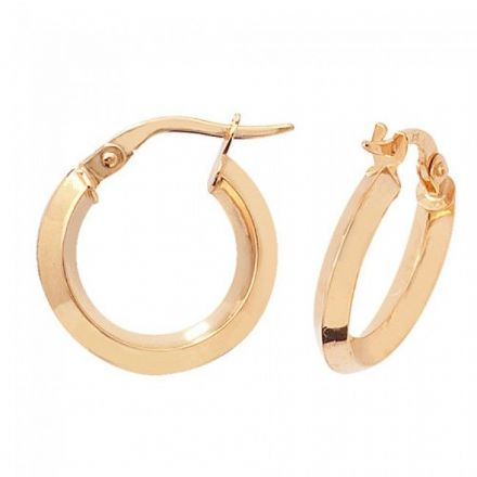 Just Gold Earrings -9Ct Earrings, ER872